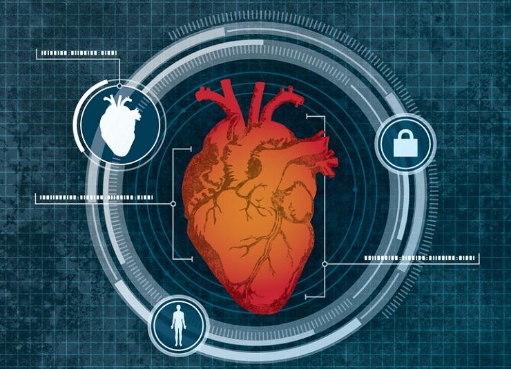 Ученые посоветовали идентифицировать пользователей спомощью сканирования сердца